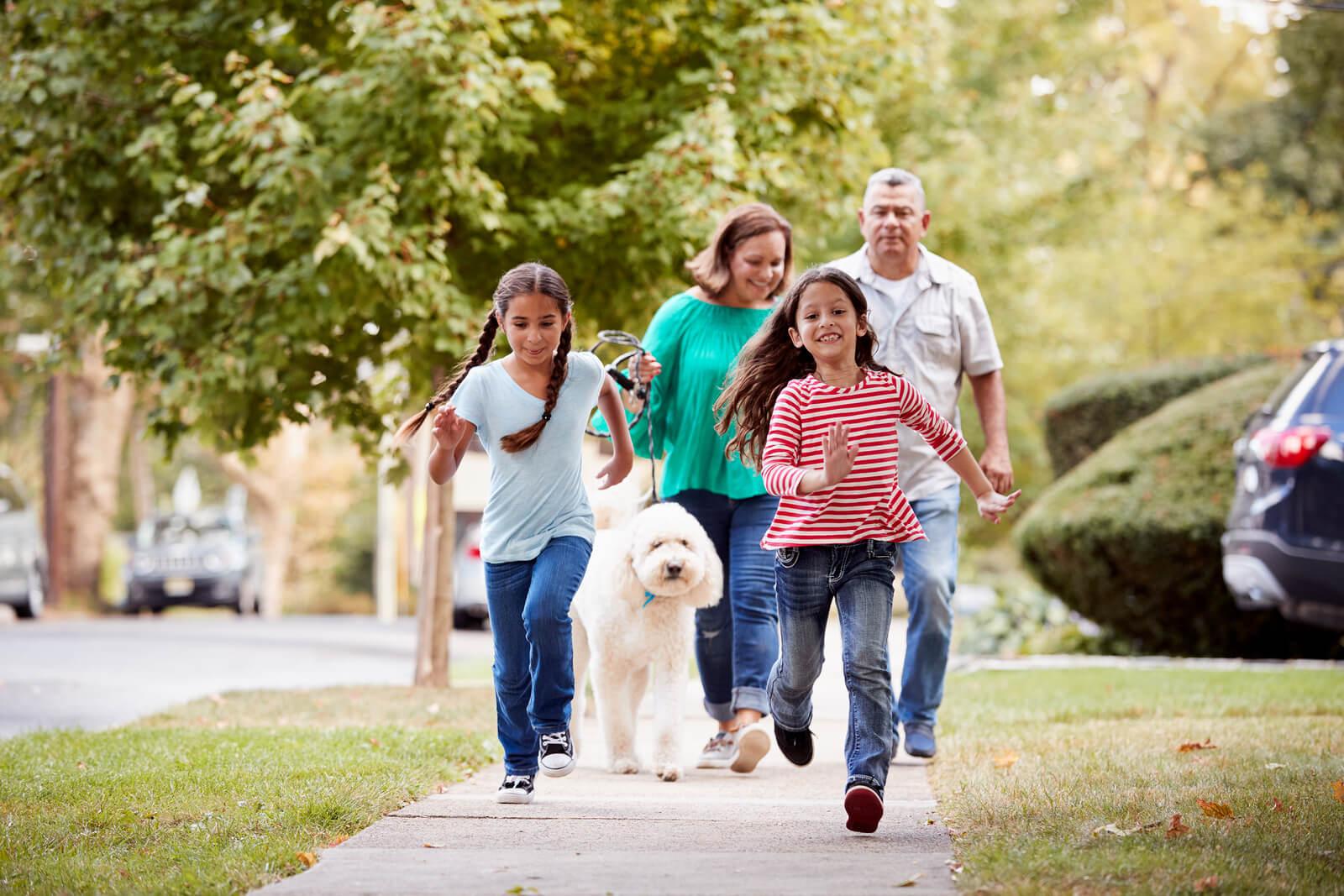 family walking a dog
