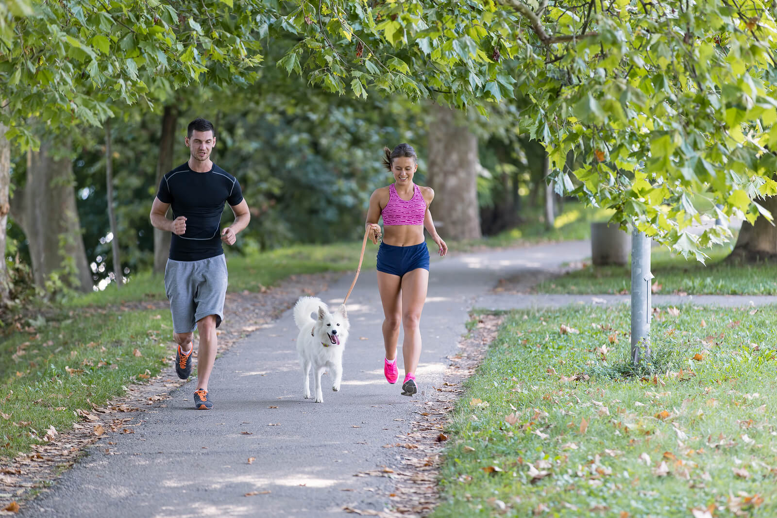 young couple jogging with a dog