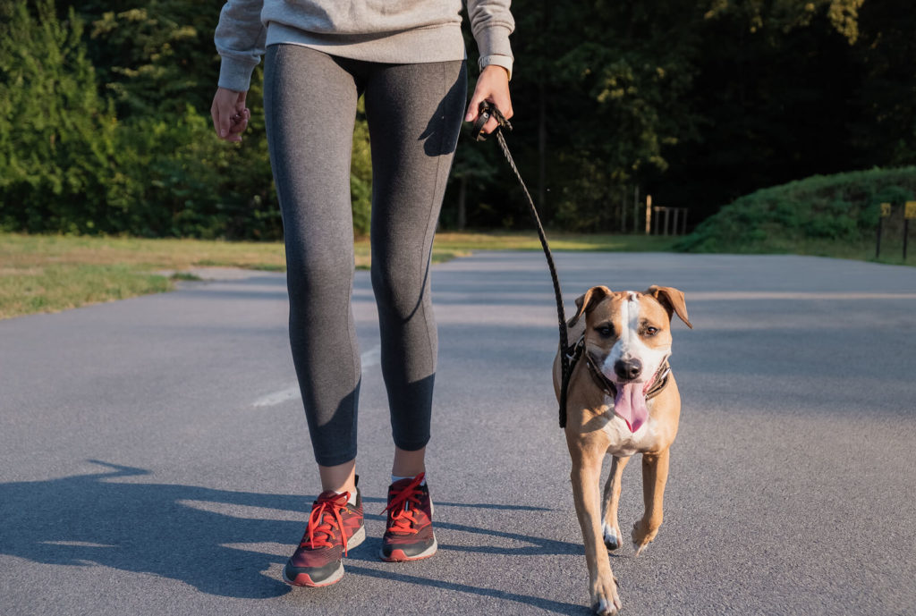 Fit woman running with a dog and holding it's leash
