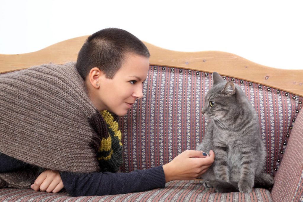 girl petting a cat on a couch